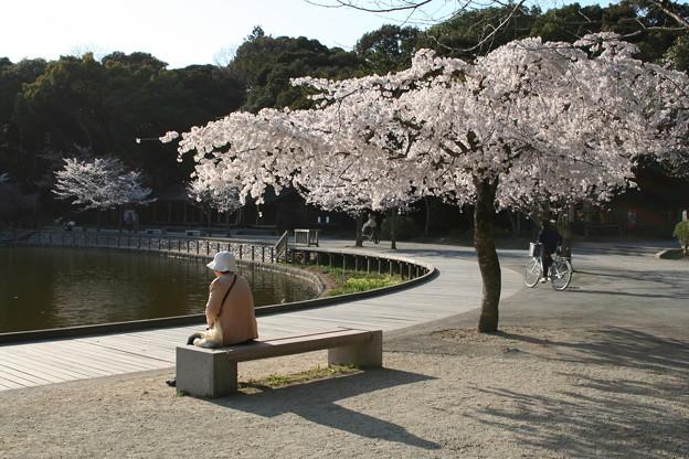 桜ばあちゃん