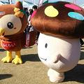 Photos: フッピーとドコモダケ