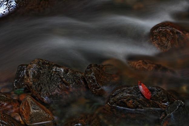写真: 『秋の訪れ。。。』 ~愛知県 くらがり渓谷~