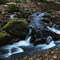 Photos: 『秋流る。。。』