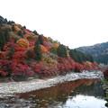 写真: 『深秋。。。』