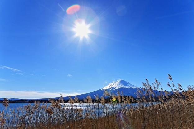 写真: 『陽光』 ~河口湖 2013 元旦~
