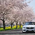 『春彩。。。』
