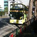 Photos: 20121213はとバス