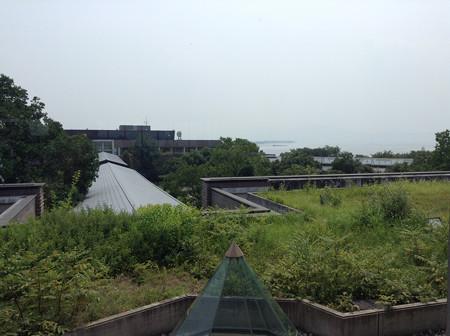 20130810琵琶湖博物館(3)