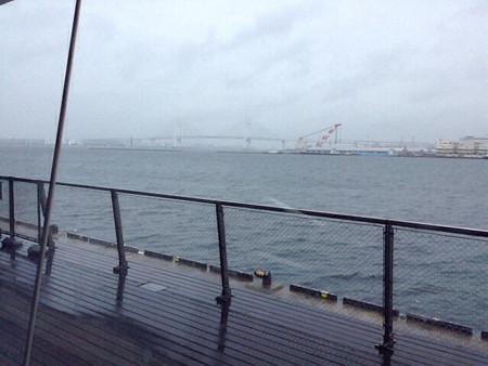 20131026横浜港大さん橋(2)