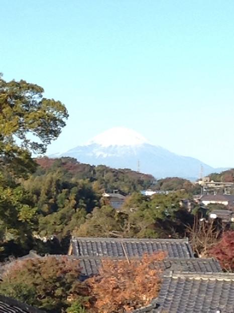 Photos: 20131123円覚寺?