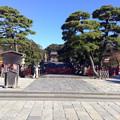 Photos: 20131123鶴岡八幡宮?