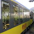 トロッコ電車で 023