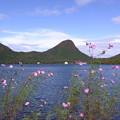 写真: 榛名湖へ (7)