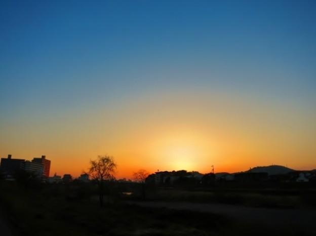 Photos: 暁の鏡川.22