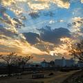 Photos: 鏡川の朝.22