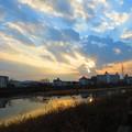 Photos: 鏡川の朝.21