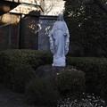 聖グレゴリオの家の聖堂前のマリア像