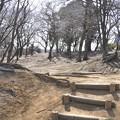 写真: 多摩湖への道(狭山公園入口)