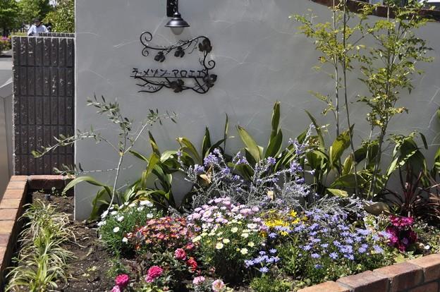 ラ・メゾン・マロニエの花壇(1)