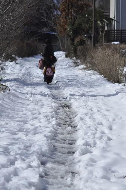 2月16日、雪の残る遊歩道