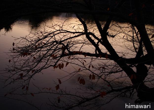 奈良の風景