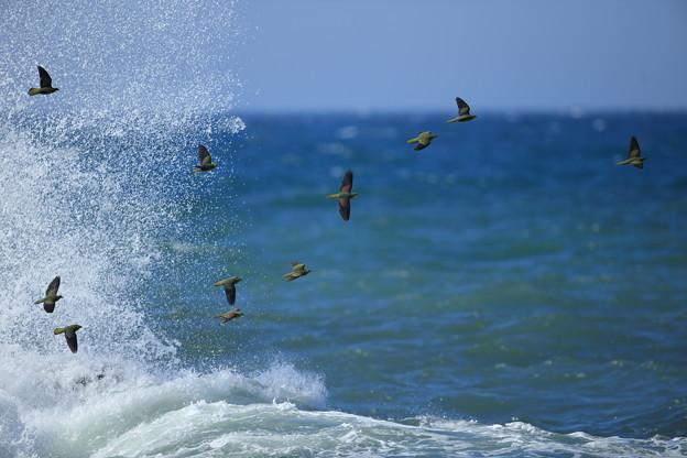 空と海としぶき