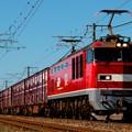 迫力ある長大編成の貨物列車