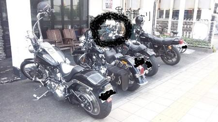 バイクと私のチャリ