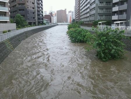 境川増水 9月15日