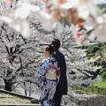Photos: 桜のある風景_3