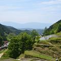 Photos: 多武峰から明日香に入る・・・