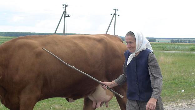 おばあちゃんと牛