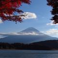Photos: 紅葉と富士山