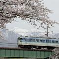 Photos: 春の伊那路を。