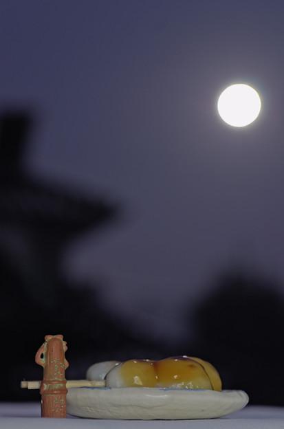 ハニワ、月を愛でる。