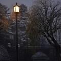 DSC_8218 雪と柳と街灯と