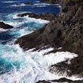 Photos: 石廊崎の荒波
