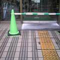 写真: 今朝小雪丸散歩の3ショット...