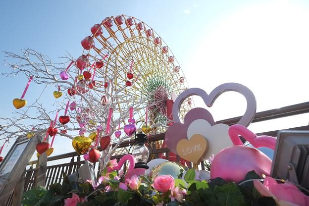 Photos: 20140205神戸 (8)