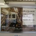 Photos: 伊豆急 8000系 TA-5 車内