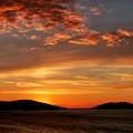 写真: 何時ものマルマラ海