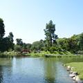Photos: 日本庭園は日本のイメージでした
