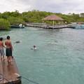 Photos: 地元の少年と泳ぐガラパゴスアザラシたち
