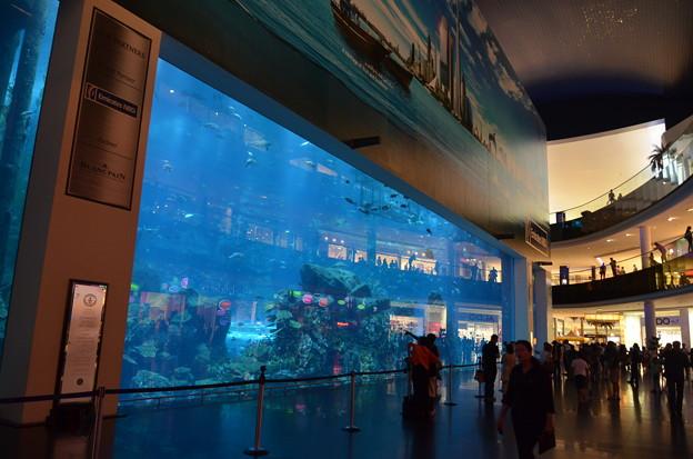 Photos: 世界最大のモール「ドバイ・モール」。水族館まである(外から観る分には無料)
