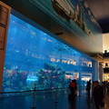 写真: 世界最大のモール「ドバイ・モール」。水族館まである(外から観る分には無料)