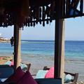 写真: 海沿いはレストランになっていて、気持ちいい