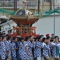 写真: 日本人会夏祭り。神輿し