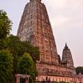 写真: マハーボディー寺院で念仏を唱えるひとびと