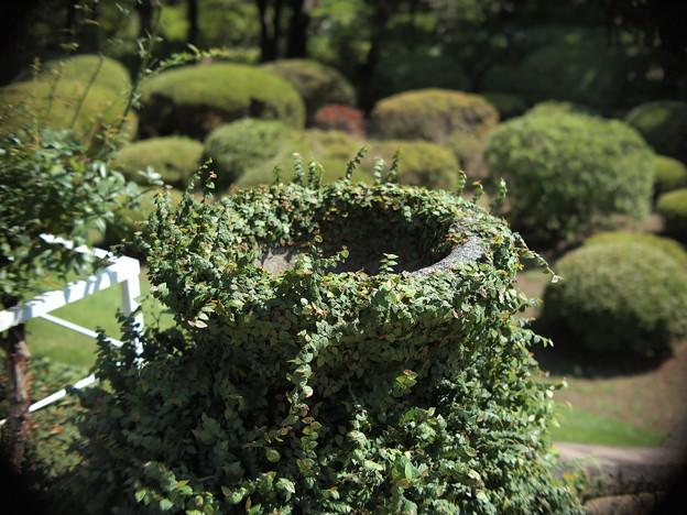 旧古河庭園内の階段のコンクリート柵の終わりの部分 by Macro Switar 26mm F1.1