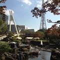 Photos: 名古屋まつり:ソーシャルタワーマーケット_31