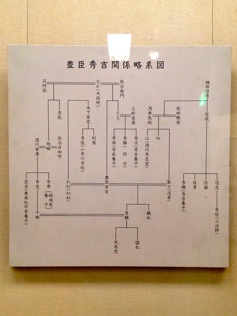 秀吉清正記念館 - 018:豊臣秀吉関係略系図