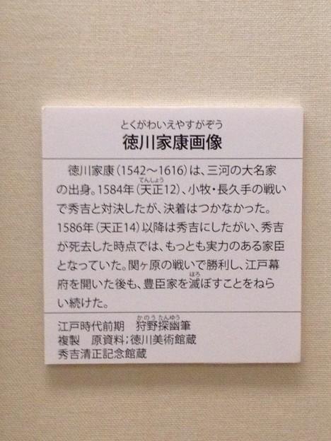 秀吉清正記念館 - 096:徳川家康画像の説明