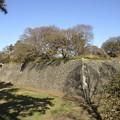 写真: 名古屋城のお堀(西鉄門 側)
